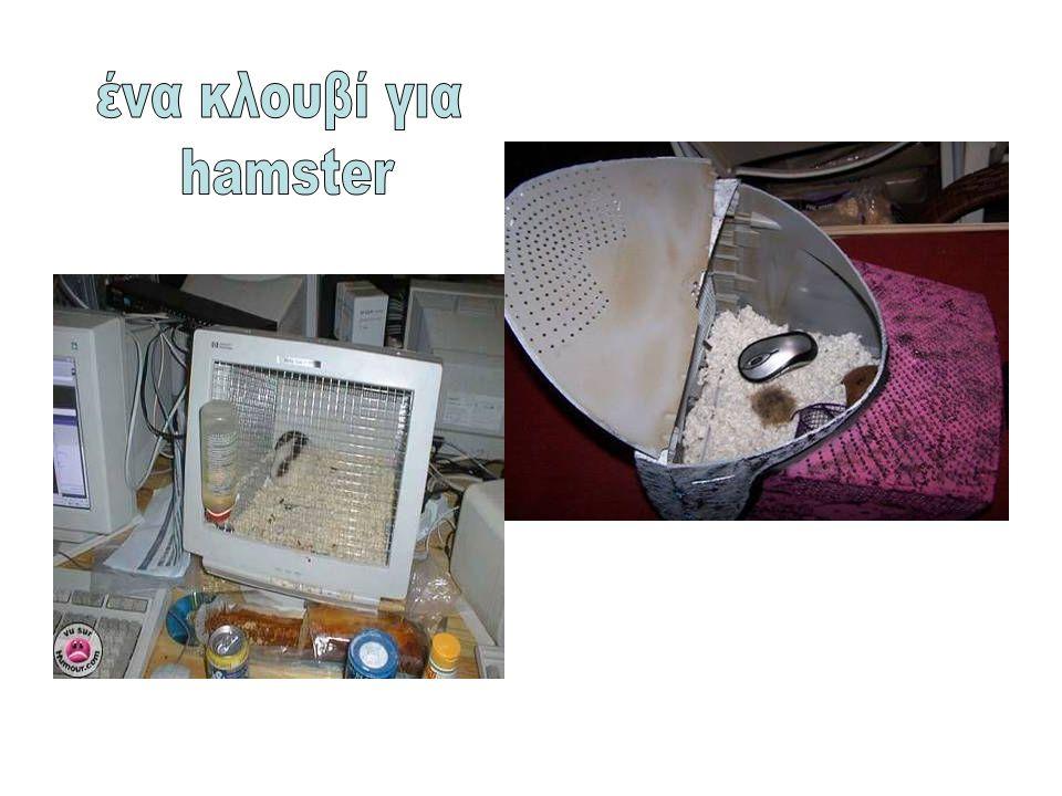 ένα κλουβί για hamster