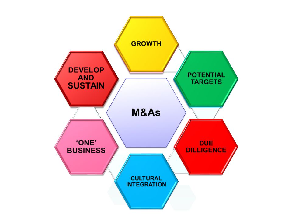 M&As DEVELOP AND SUSTAIN 'ONE' BUSINESS POTENTIAL TARGETS