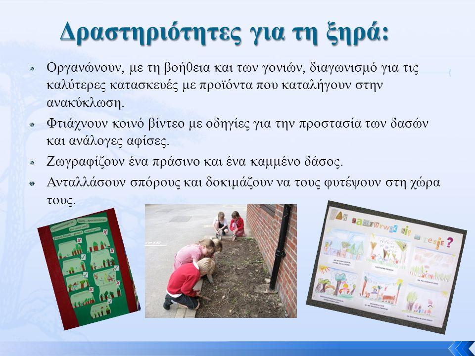 Δραστηριότητες για τη ξηρά: