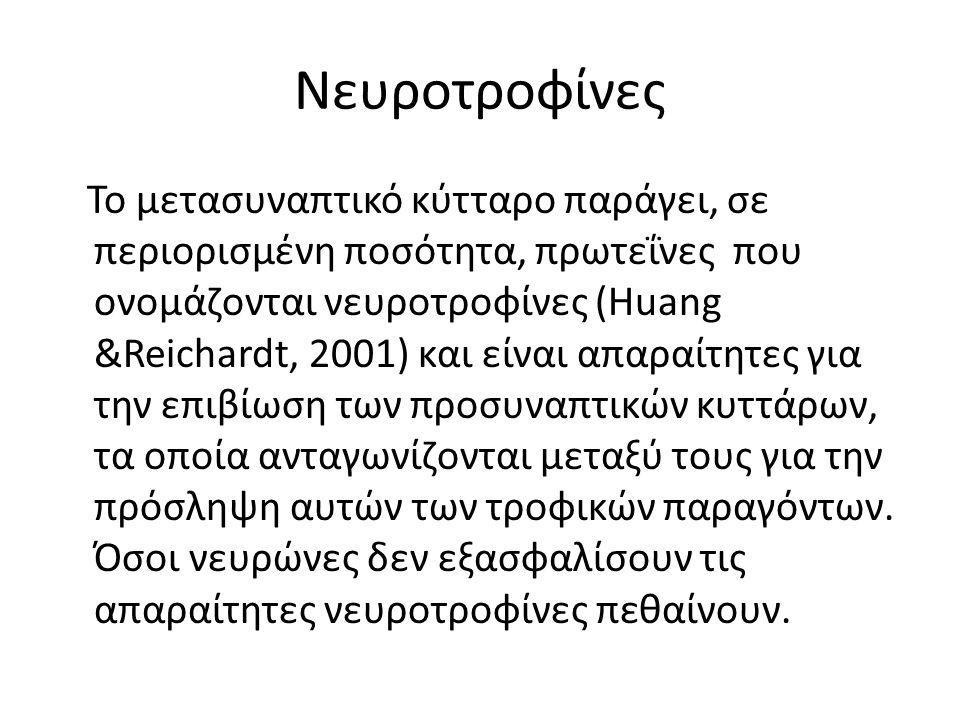 Νευροτροφίνες