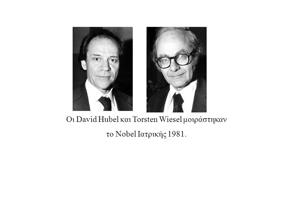 Οι David Hubel και Torsten Wiesel μοιράστηκαν