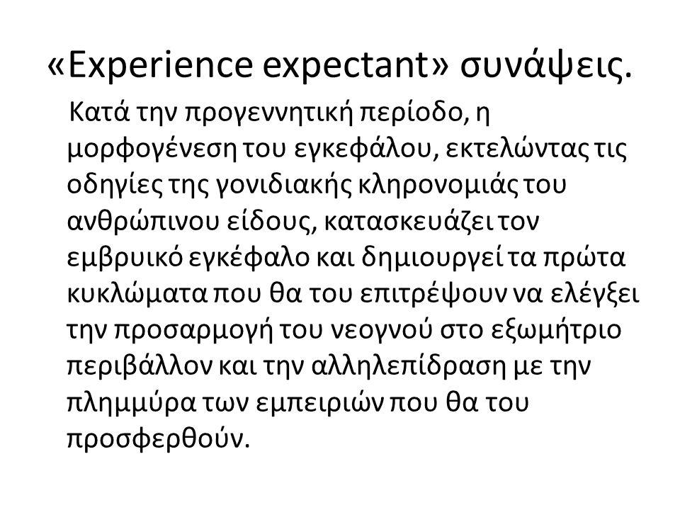 «Εxperience expectant» συνάψεις.