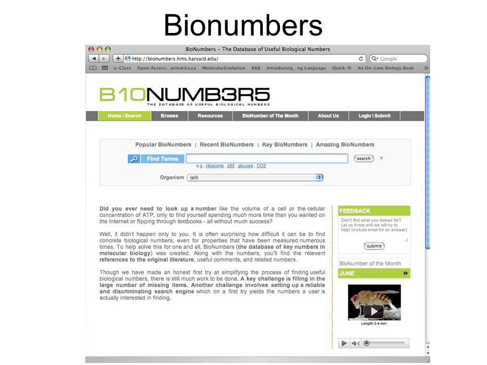 Bionumbers