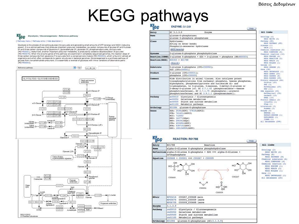Βάσεις Δεδομένων KEGG pathways