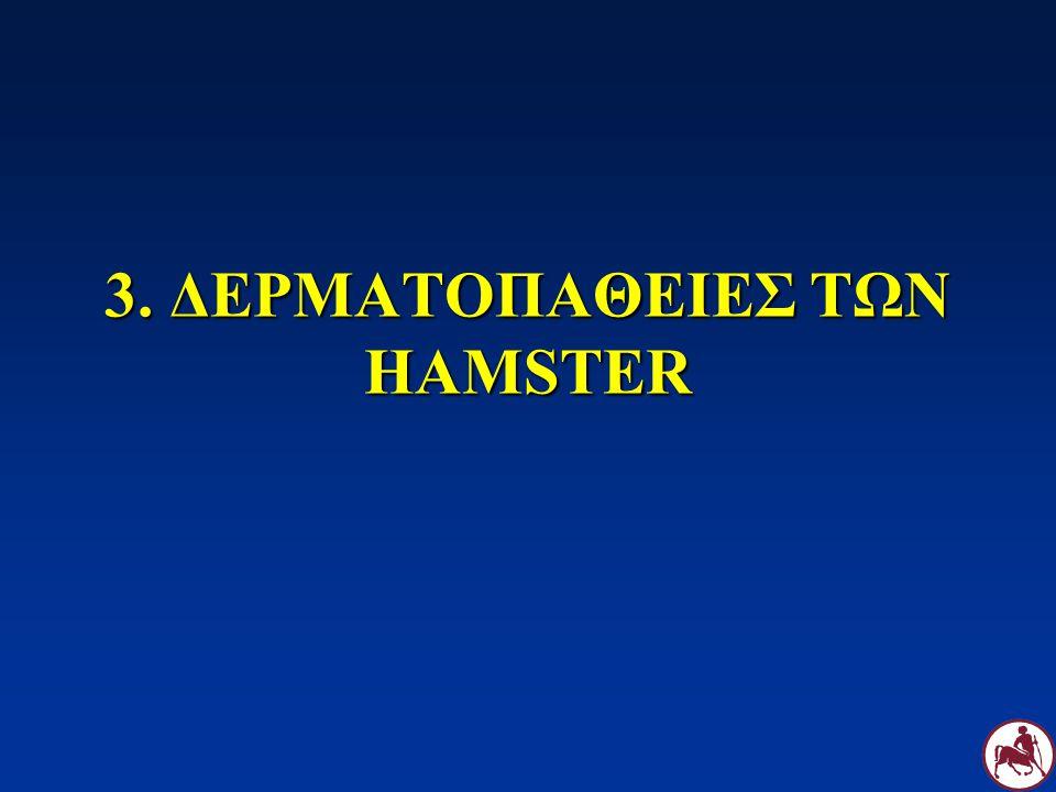 3. ΔΕΡΜΑΤΟΠΑΘΕΙΕΣ ΤΩΝ HAMSTER