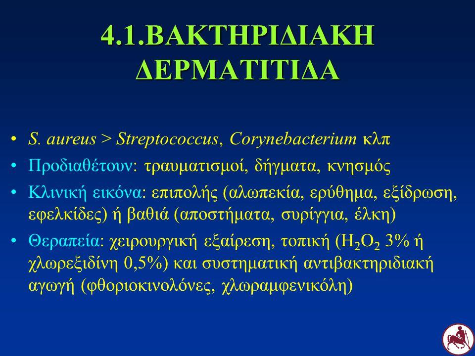 4.1.ΒΑΚΤΗΡΙΔΙΑΚΗ ΔΕΡΜΑΤΙΤΙΔΑ