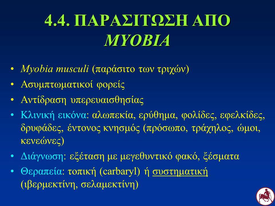 4.4. ΠΑΡΑΣΙΤΩΣΗ ΑΠΟ MYOBIA Myobia musculi (παράσιτο των τριχών)