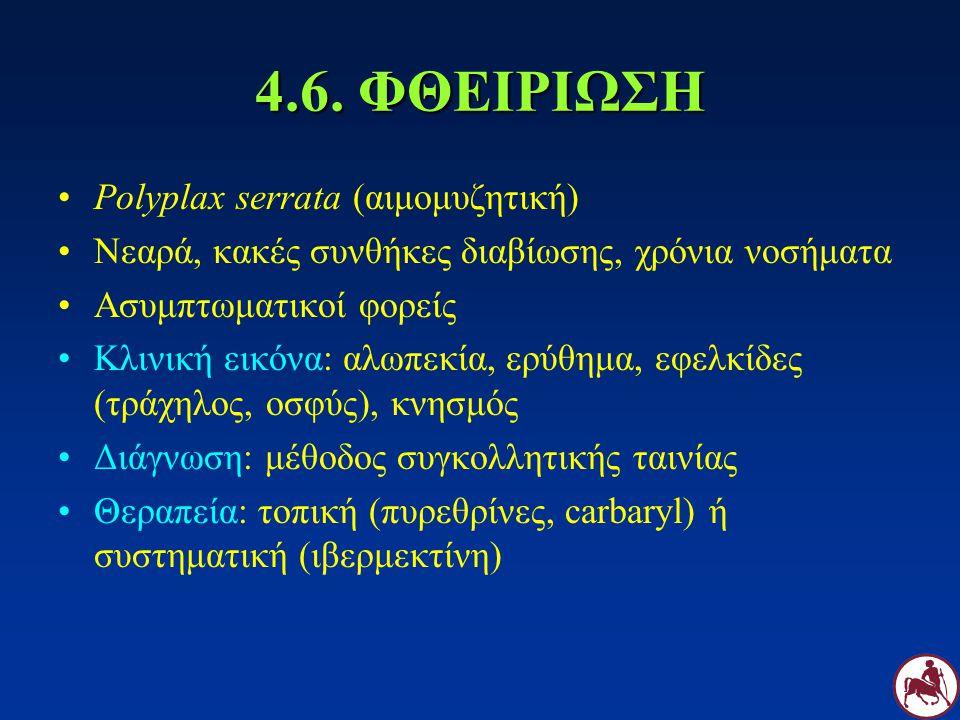 4.6. ΦΘΕΙΡΙΩΣΗ Polyplax serrata (αιμομυζητική)