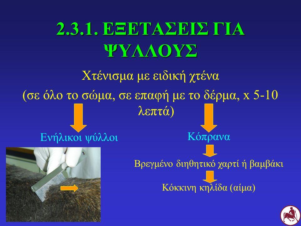 2.3.1. ΕΞΕΤΑΣΕΙΣ ΓΙΑ ΨΥΛΛΟΥΣ Χτένισμα με ειδική χτένα