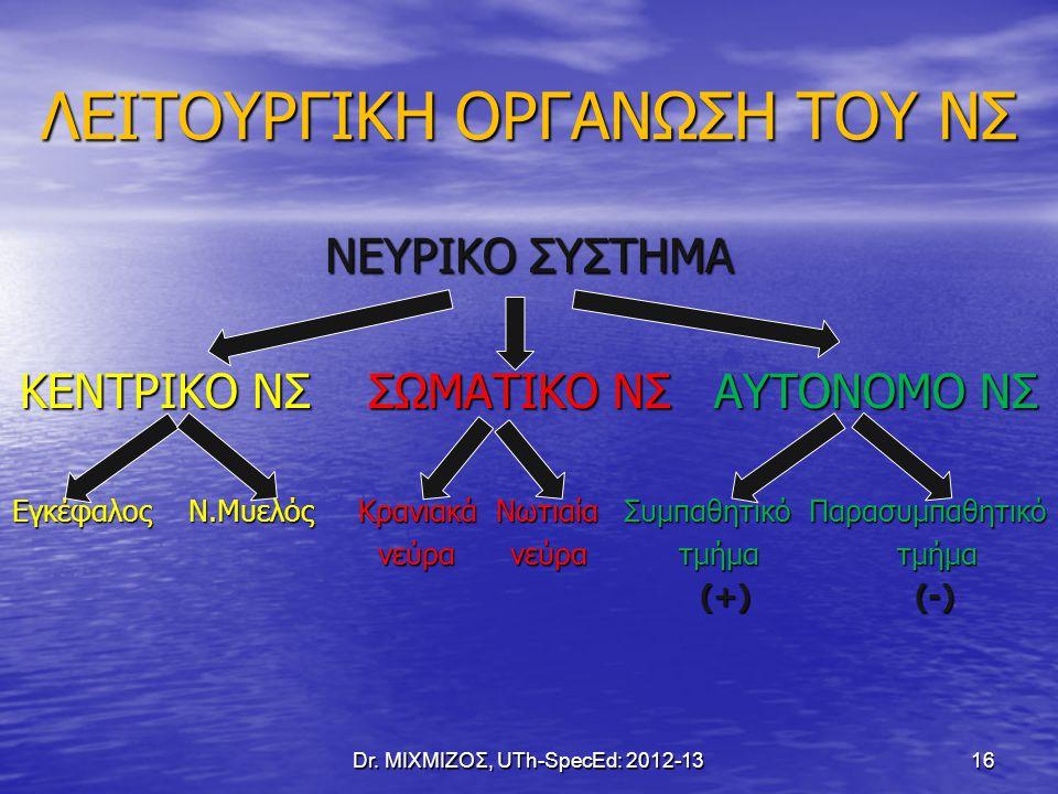 ΛΕΙΤΟΥΡΓΙΚΗ ΟΡΓΑΝΩΣΗ ΤΟΥ ΝΣ