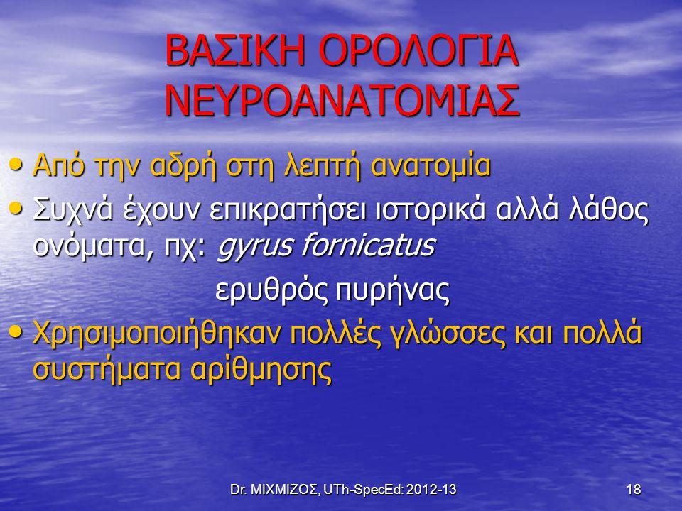 ΒΑΣΙΚΗ ΟΡΟΛΟΓΙΑ ΝΕΥΡΟΑΝΑΤΟΜΙΑΣ