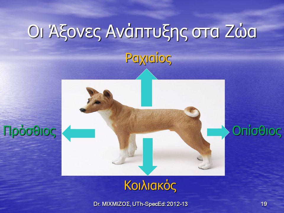 Οι Άξονες Ανάπτυξης στα Ζώα
