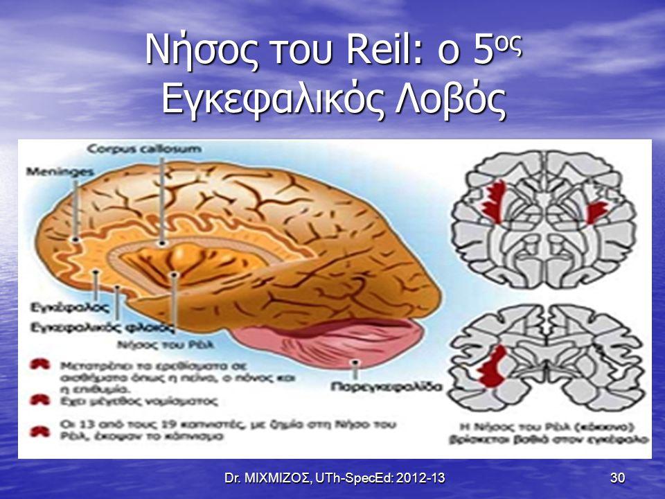 Νήσος του Reil: o 5ος Εγκεφαλικός Λοβός
