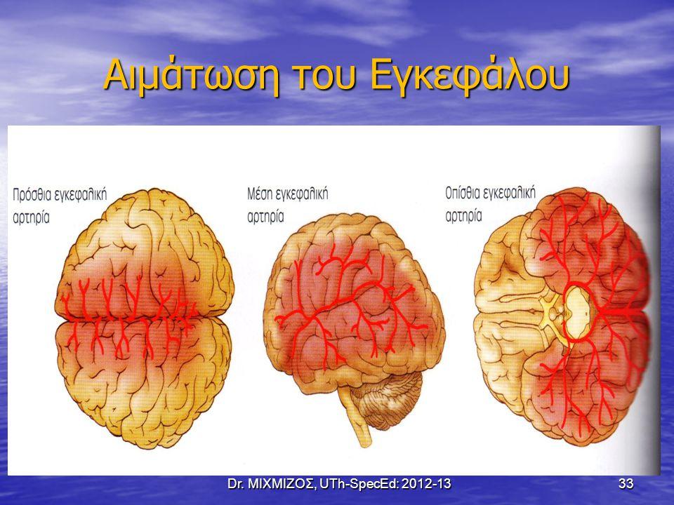 Αιμάτωση του Εγκεφάλου