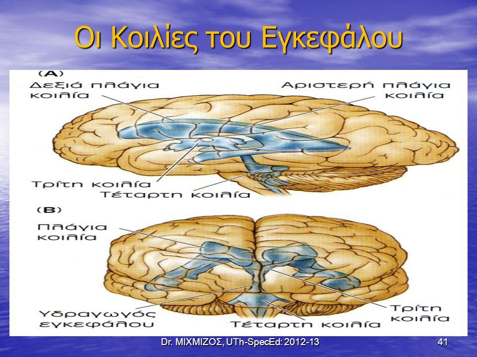 Οι Κοιλίες του Εγκεφάλου