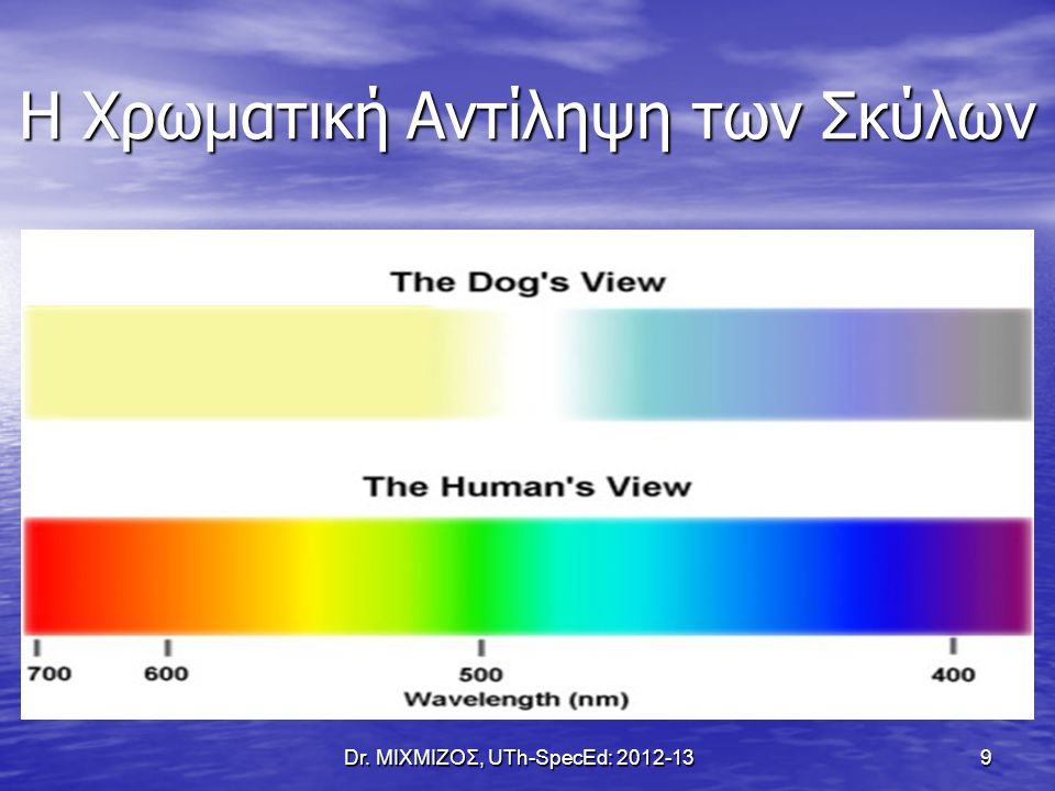 Η Χρωματική Αντίληψη των Σκύλων