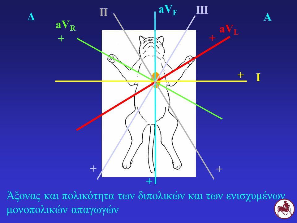aVF III. II. Δ. Α. aVR. aVL. + + + I.