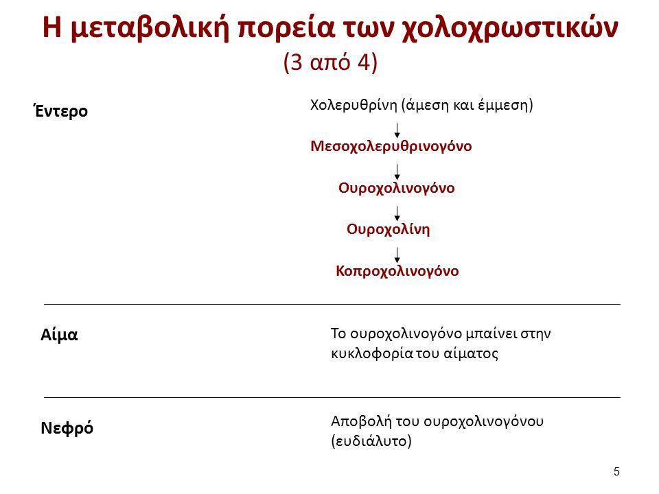 Η μεταβολική πορεία των χολοχρωστικών (4 από 4)