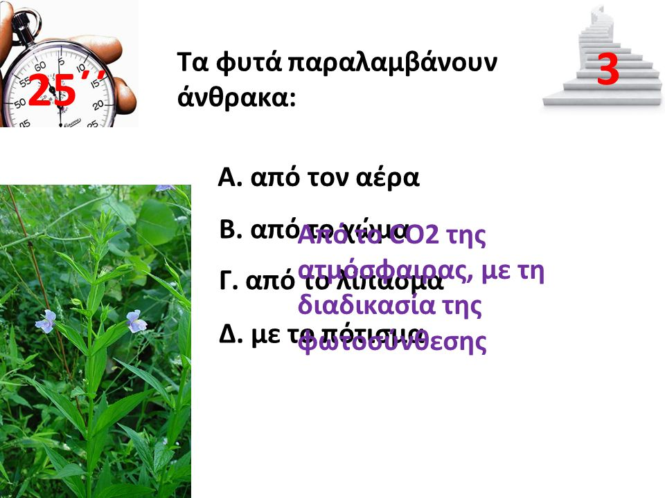 3 25΄΄ Τα φυτά παραλαμβάνουν άνθρακα: Α. από τον αέρα Β. από το χώμα
