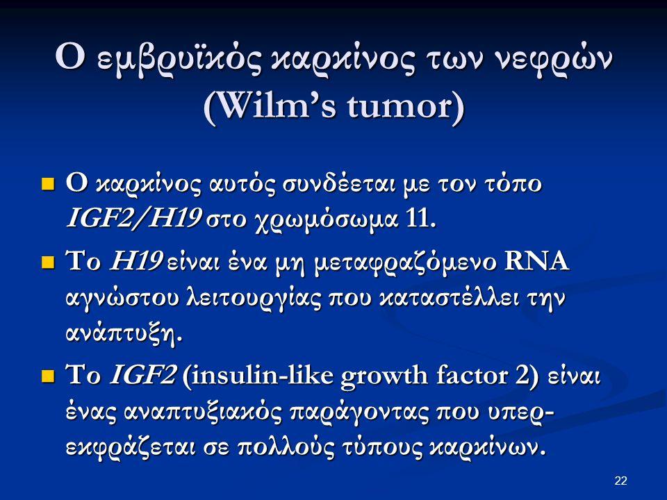 Ο εμβρυϊκός καρκίνος των νεφρών (Wilm's tumor)