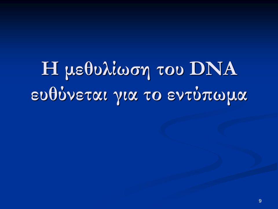 Η μεθυλίωση του DNA ευθύνεται για το εντύπωμα