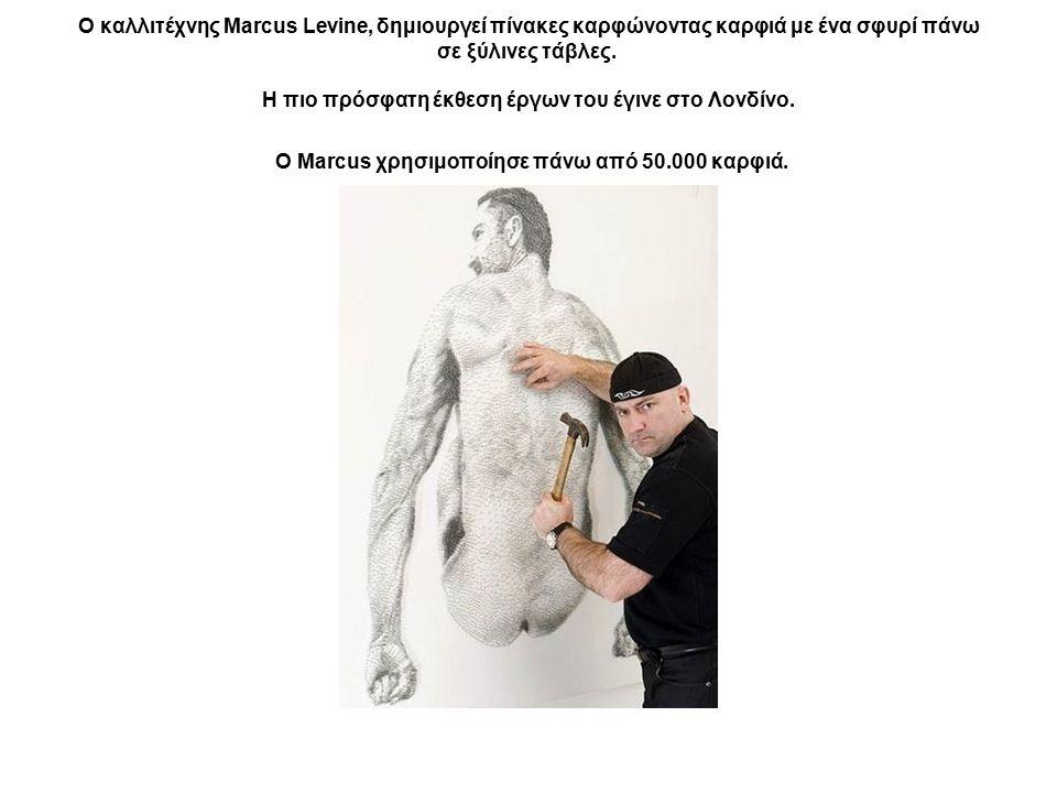 Ο καλλιτέχνης Marcus Levine, δημιουργεί πίνακες καρφώνοντας καρφιά με ένα σφυρί πάνω σε ξύλινες τάβλες. Η πιο πρόσφατη έκθεση έργων του έγινε στο Λονδίνο.