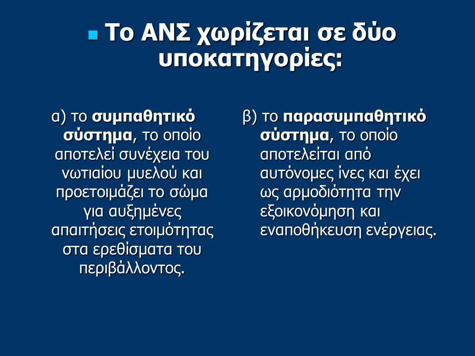 Το ΑΝΣ χωρίζεται σε δύο υποκατηγορίες: