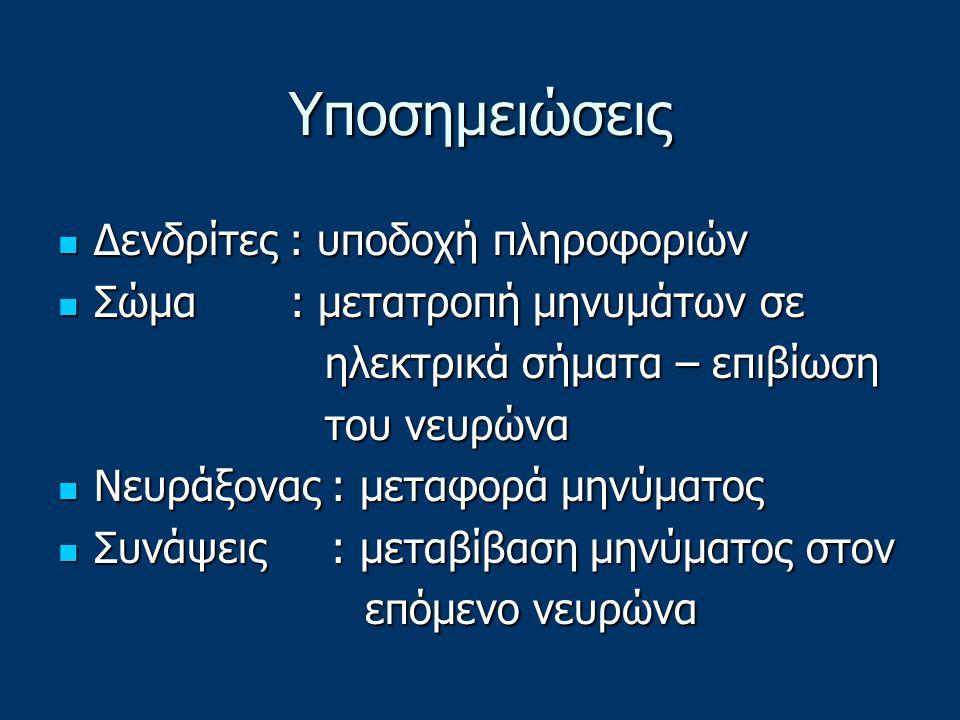 Υποσημειώσεις Δενδρίτες : υποδοχή πληροφοριών