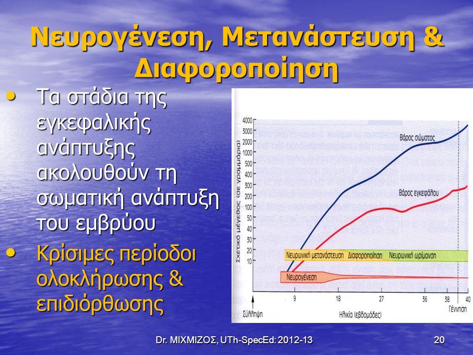 Νευρογένεση, Μετανάστευση & Διαφοροποίηση