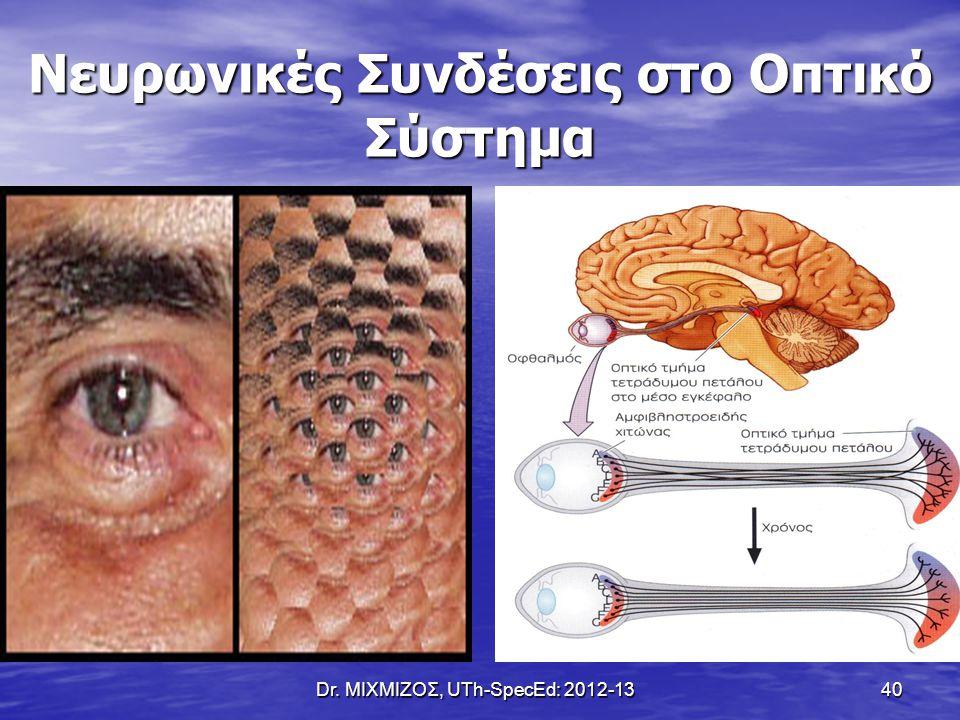 Νευρωνικές Συνδέσεις στο Οπτικό Σύστημα