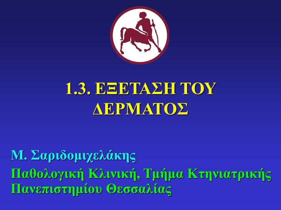 1.3. ΕΞΕΤΑΣΗ ΤΟΥ ΔΕΡΜΑΤΟΣ Μ. Σαριδομιχελάκης