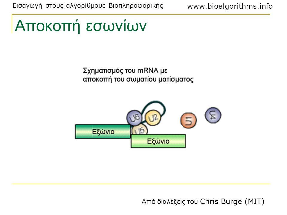 Αποκοπή εσωνίων Από διαλέξεις του Chris Burge (MIT)