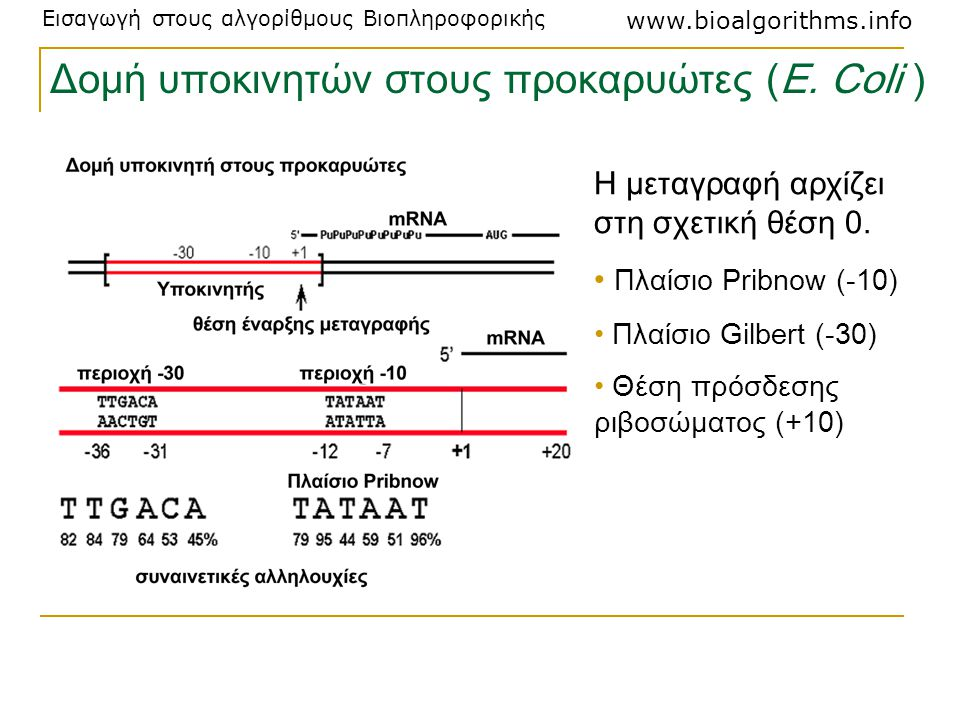 Δομή υποκινητών στους προκαρυώτες (Ε. Coli )