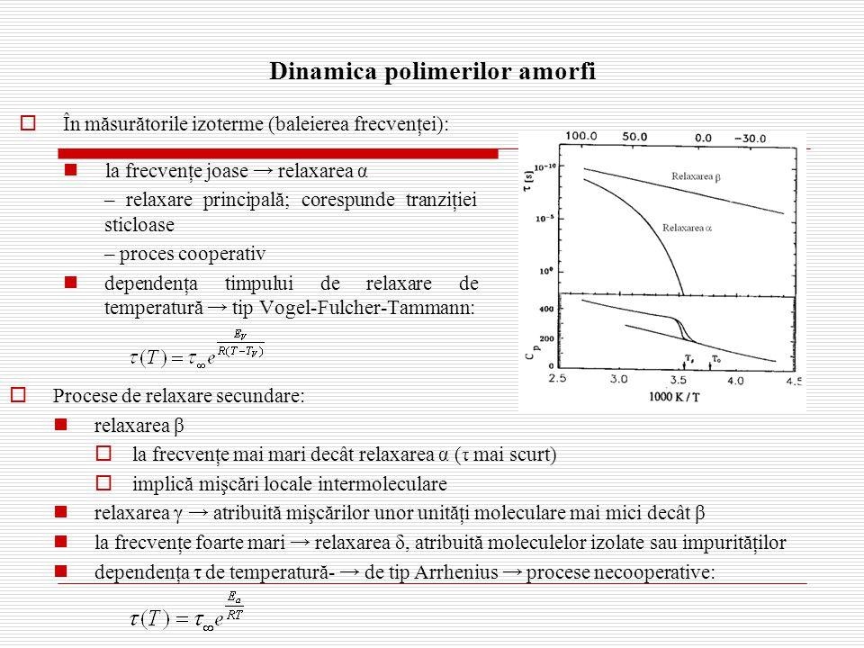 Dinamica polimerilor amorfi