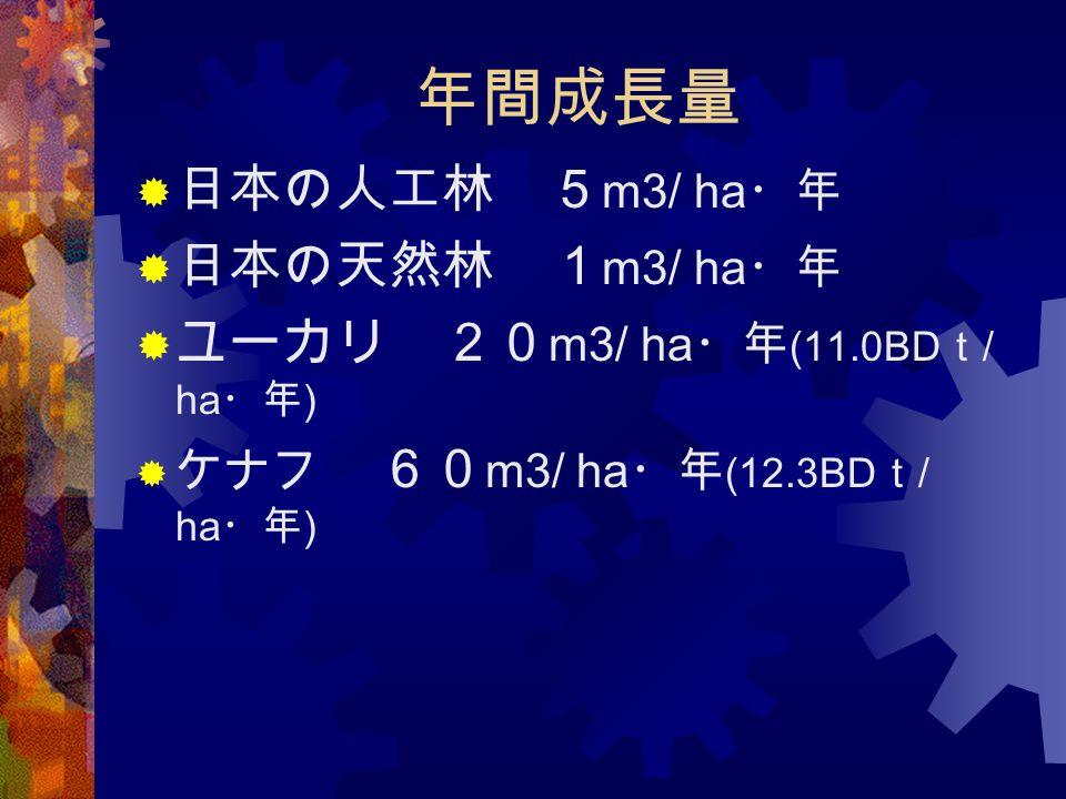年間成長量 日本の人工林 5m3/ ha・年 日本の天然林 1m3/ ha・年 ユーカリ 20m3/ ha・年(11.0BDt/ ha・年)