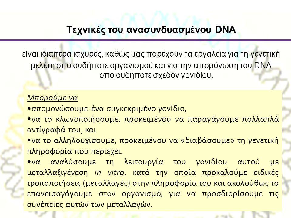 Tεχνικές του ανασυνδυασµένου DNA