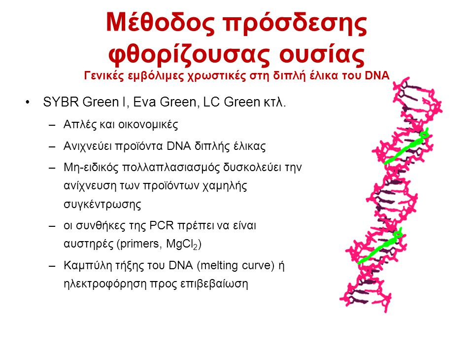 Μέθοδος πρόσδεσης φθορίζουσας ουσίας Γενικές εμβόλιμες χρωστικές στη διπλή έλικα του DNA