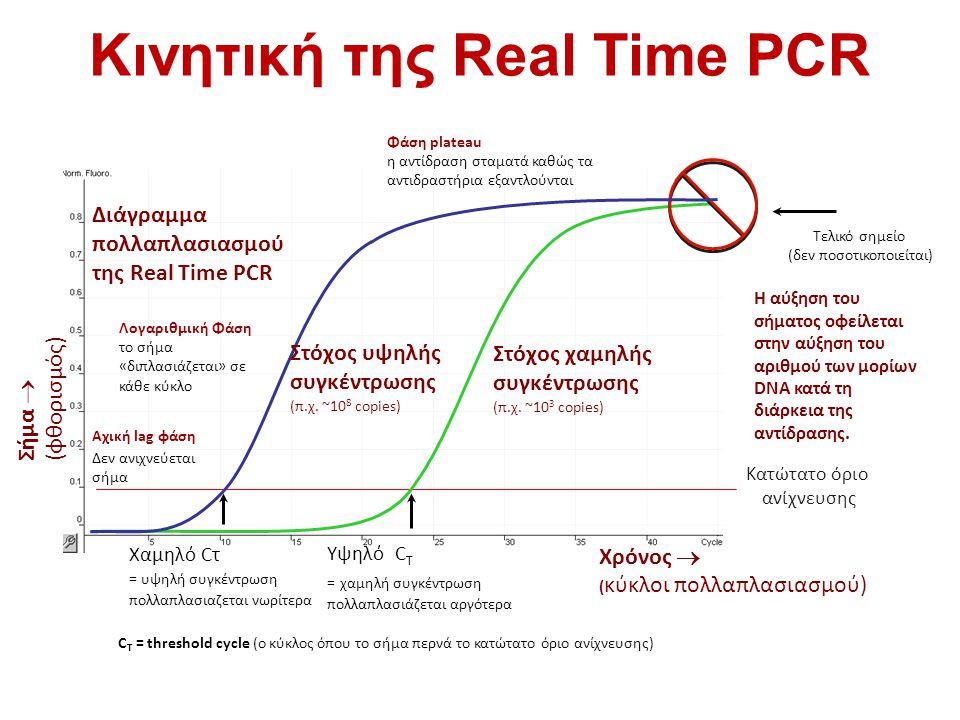 Κινητική της Real Time PCR