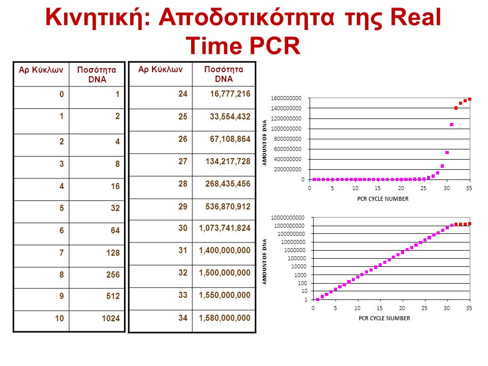 Κινητική: Αποδοτικότητα της Real Time PCR