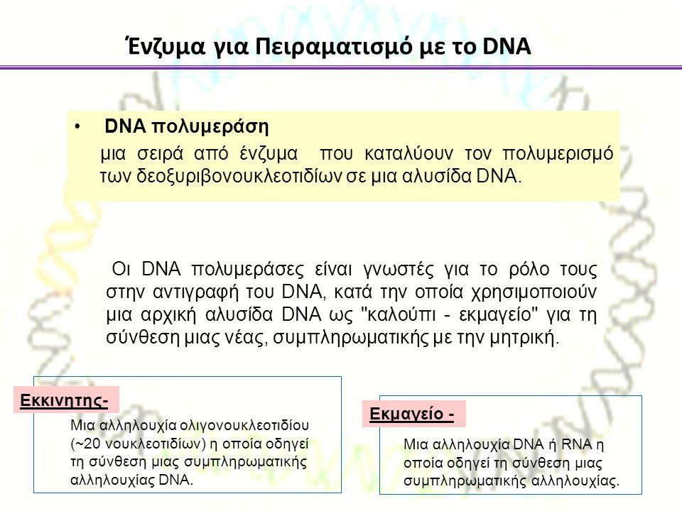 Ένζυμα για Πειραματισμό με το DNA