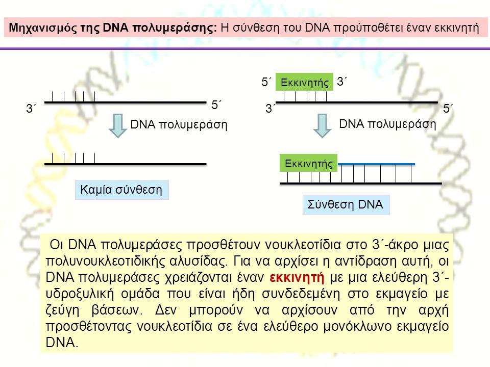 Μηχανισμός της DNA πολυμεράσης: Η σύνθεση του DNA προύποθέτει έναν εκκινητή