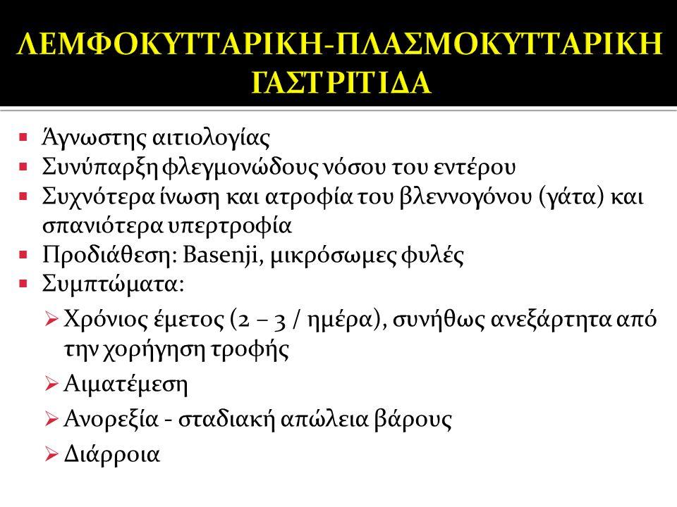 ΛΕΜΦΟΚΥΤΤΑΡΙΚΗ-ΠΛΑΣΜΟΚΥΤΤΑΡΙΚΗ ΓΑΣΤΡΙΤΙΔΑ