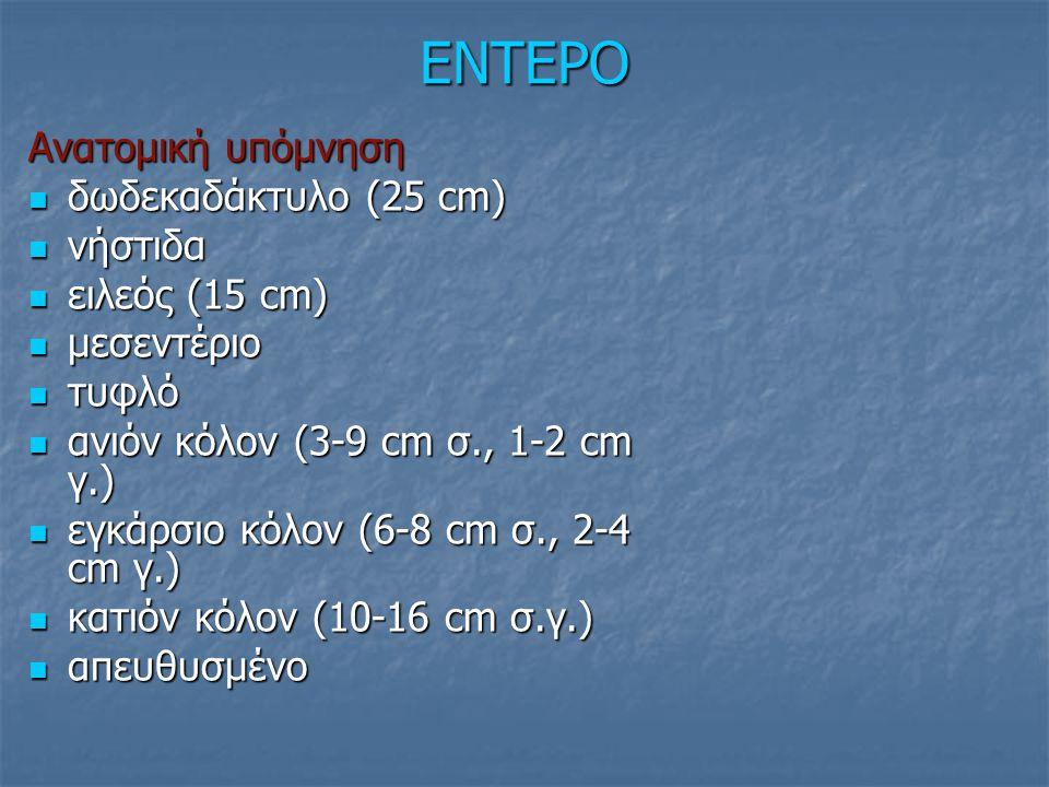 ΕΝΤΕΡΟ Ανατομική υπόμνηση δωδεκαδάκτυλο (25 cm) νήστιδα ειλεός (15 cm)