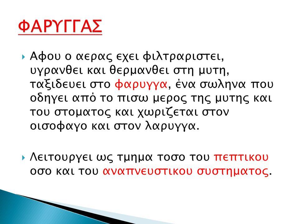 ΦΑΡΥΓΓΑΣ