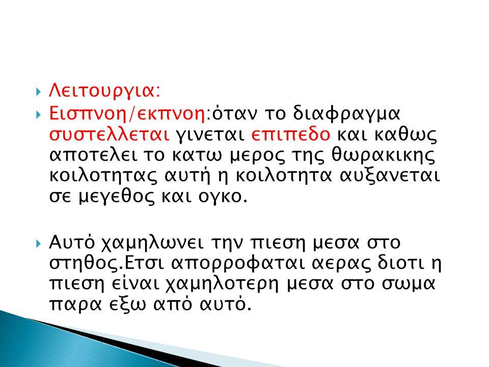 Λειτουργια: