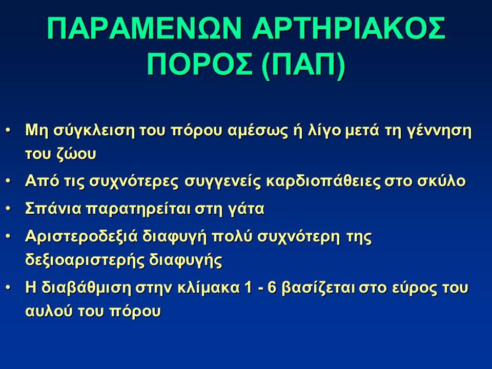 ΠΑΡΑΜΕΝΩΝ ΑΡΤΗΡΙΑΚΟΣ ΠΟΡΟΣ (ΠΑΠ)