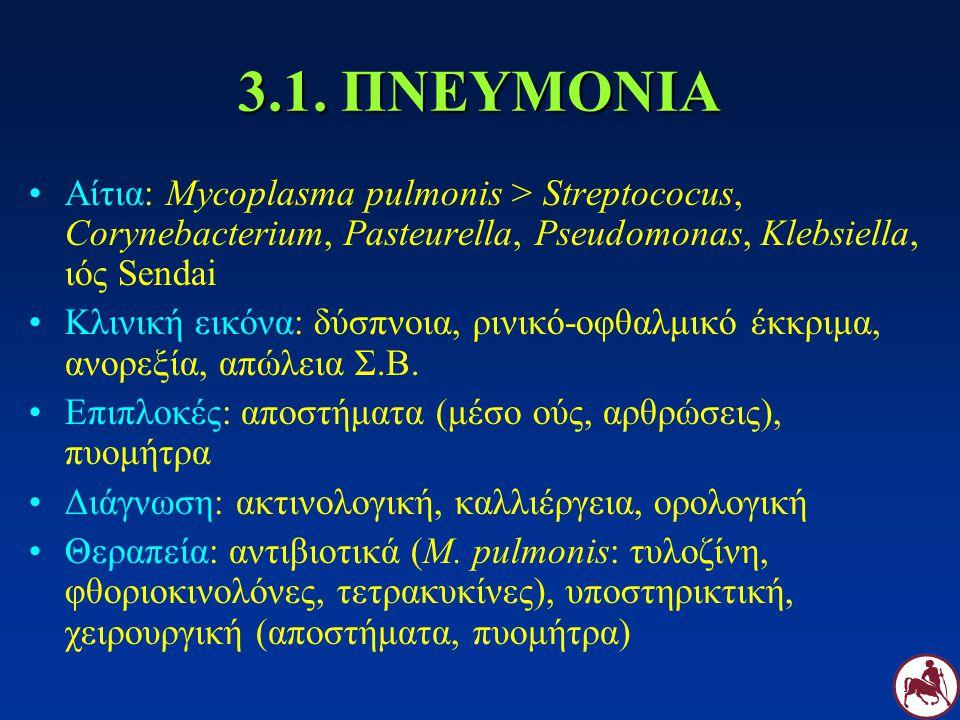 3.1. ΠΝΕΥΜΟΝΙΑ Αίτια: Mycoplasma pulmonis > Streptococus, Corynebacterium, Pasteurella, Pseudomonas, Klebsiella, ιός Sendai.