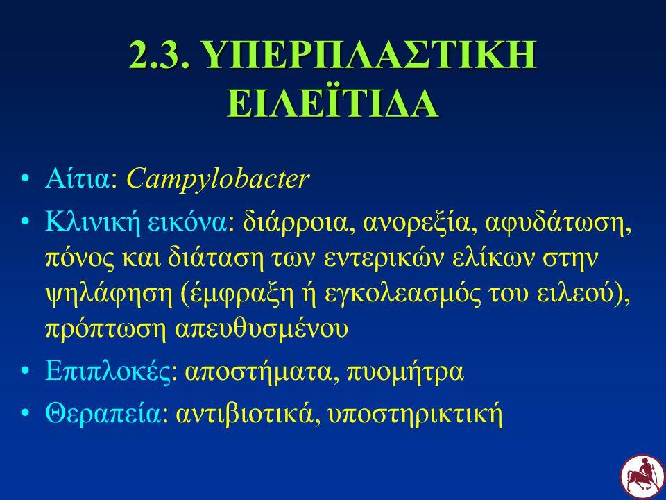 2.3. ΥΠΕΡΠΛΑΣΤΙΚΗ ΕΙΛΕΪΤΙΔΑ