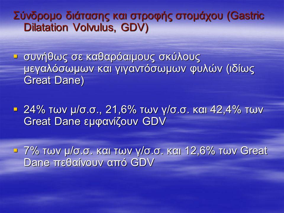 Σύνδρομο διάτασης και στροφής στομάχου (Gastric Dilatation Volvulus, GDV)