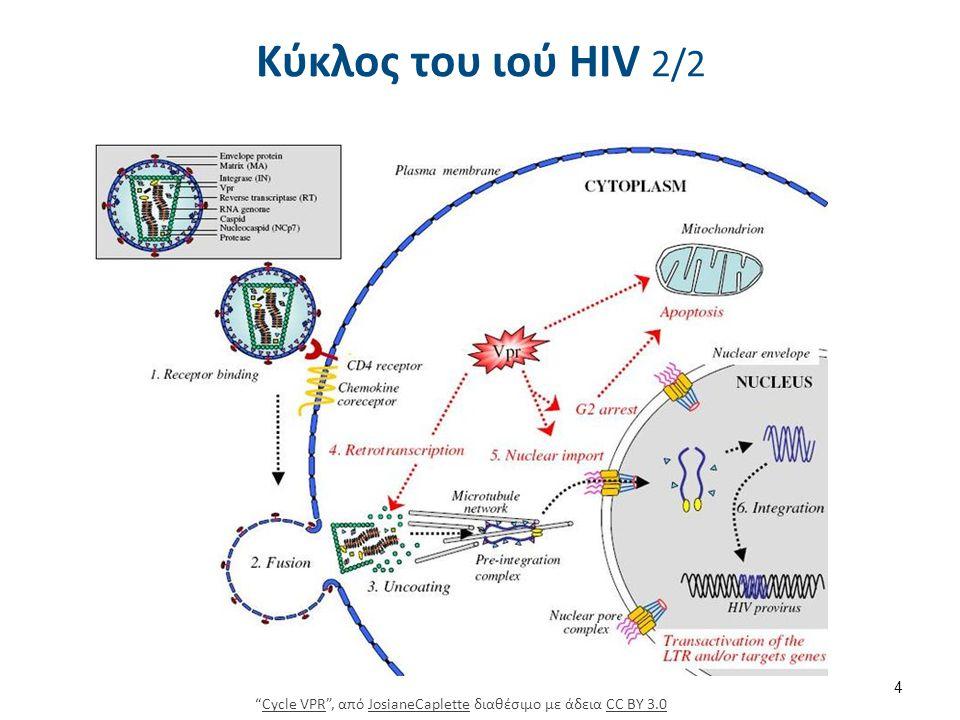 Κλινική εικόνα AIDS 1/5 Κατηγορία (Στάδιο) Α